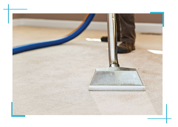 Carpet Cleaning Belmont, CA PROS | 650